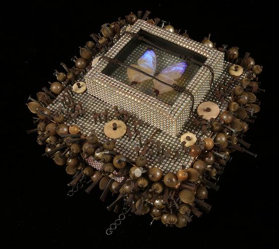 Treasure box by William Harper