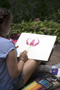 A student draws from life at the Cleveland Botanical Gardens.