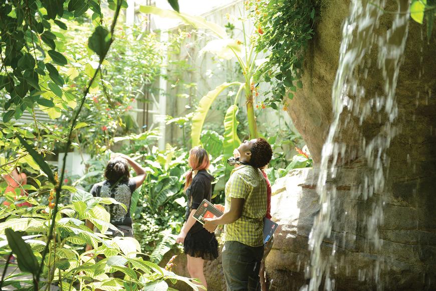 Class at the Cleveland Botanical Garden